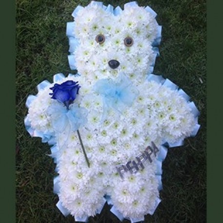 Teddy tribute